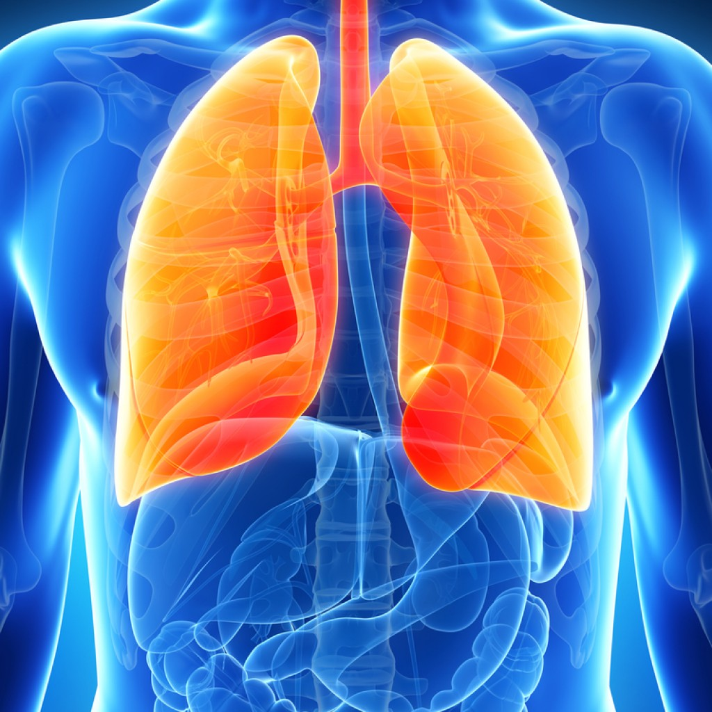 human body health disease pneumonia essay